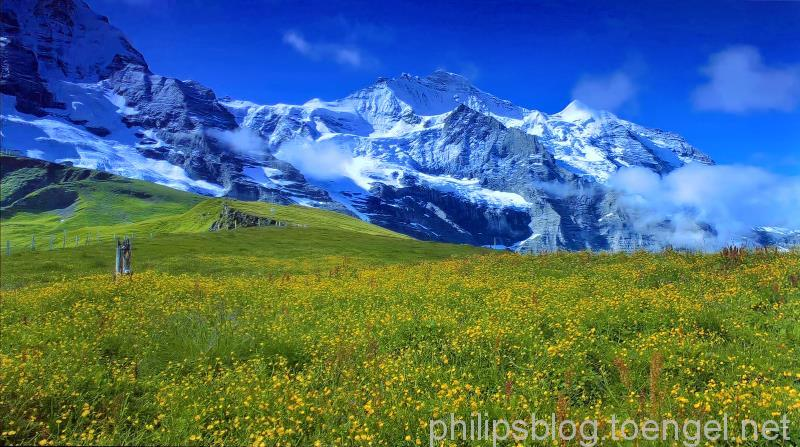 Philips P5: Perfect Natural Reality